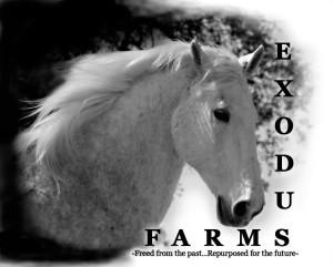 ExodusFarms_Logo1