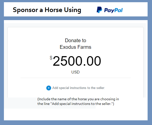 sponsor horse paypal