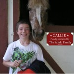 Sponsor a Horse example